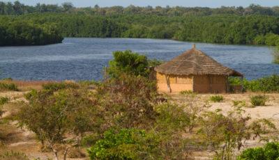 Delta du Saloum